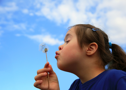 what does esy stand for in special education